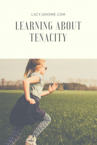 Learning About Tenacity