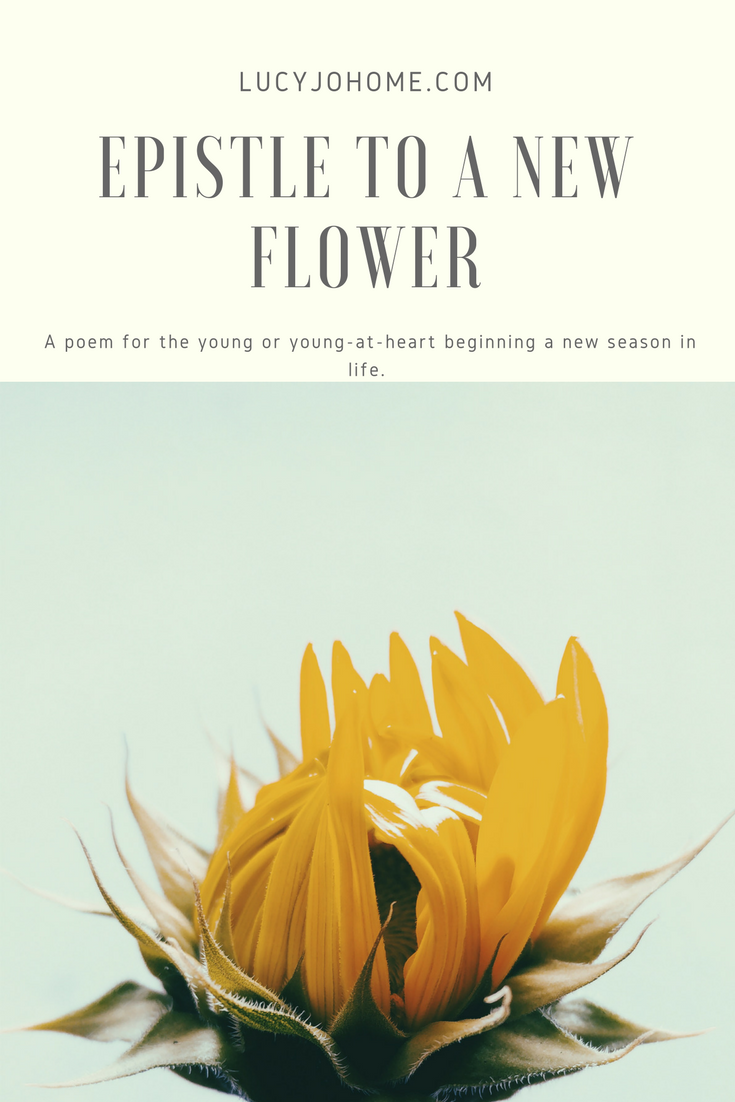 Epistle to a New Flower